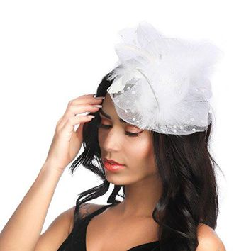Fascinator Hat for Women Flower Mesh Feather Hair Forked Clip on a Headband Cocktail Tea Party Kentucky Derby Headwear