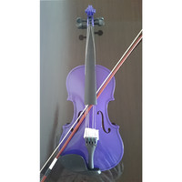 Student Acoustic Violin Full 1/2 Maple Spruce with Case Bow Rosin Purple Color