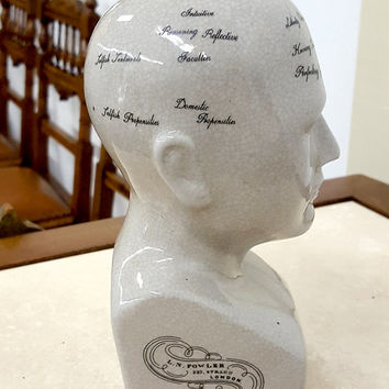 "8 1/4"" Ceramic Crackle Glazed Phrenology Head"