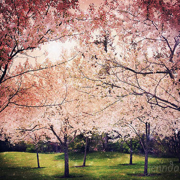 Crystalline - fine art photograph, spring tree photography, pink nursery decor, fairy tale, surreal landscape photography