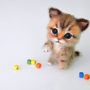 best tiny kittens products on wanelo