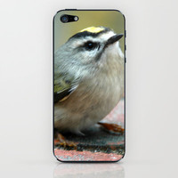 ONCE I HEARD A SONG iPhone & iPod Skin by dh | mk photo | Society6