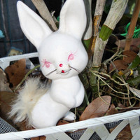 1950's Easter Bunny National Pottery~ Japan~WHITE BISQUE~ ALBINO White Fluffy  Tailed Easter Bunny Rabbit ~Hand painted~