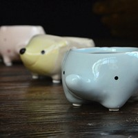 Kawaii Little Animals Ceramic Flowerpot Pig Elephant Hedgehog Planter On Sale Cute Succulent Plants Flower Pot