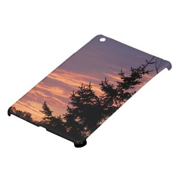 Salmon Sunrise iPad Mini Cover