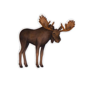 Moose Wildlife Magnet