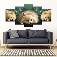 Pomeranian Dog Print- 5 Piece Framed Canvas- Free Shipping