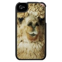 Baby Llama 2 iPhone 4 Cases from Zazzle.com