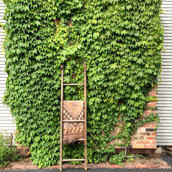 Antique Farm Ladder, 6 Foot Wood Ladder, Rustic Wood Ladder, Painters Ladder, Blanket Ladder