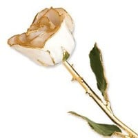 Long Stem Dipped 24K Gold Trim White Satin Lacquered Genuine Rose In Gold Gift Box