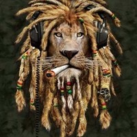 Far Out Collection Extra Heavy Queen Size Mink Blanket - Rasta Lion (79 inch  x 85 inch )