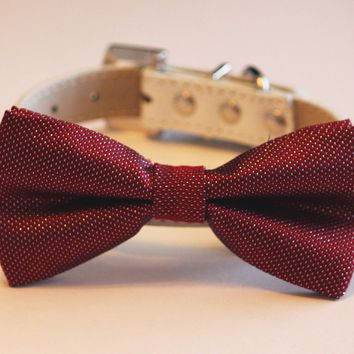 Red Burgundy dog Dog Bow Tie with high quality White leather collar - Chic dog Bow tie