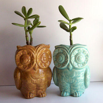 Ceramic Tiki Owl Planter Vintage Design in Aqua by fruitflypie