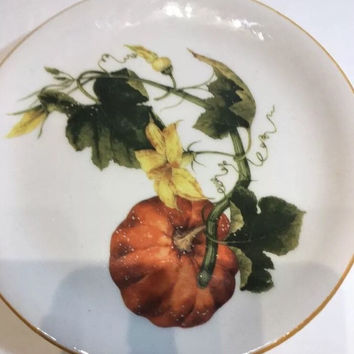 Williams Sonoma Botanical Pumpkin Ceramic Salad/Appetizer Plate Harvest Fall