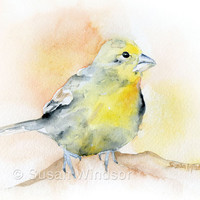 Goldfinch Bird Watercolor Painting Giclee Fine Art Print 8 x 10