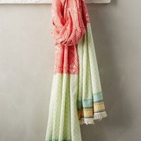 Maryam Embroidered Scarf by Anthropologie