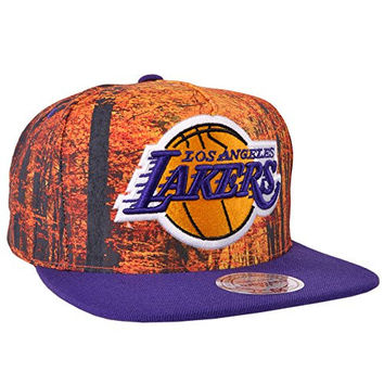 e09605e4529 Los Angeles Lakers Forest Camo Snapback Hat Mitchell Ness Licensed NBA