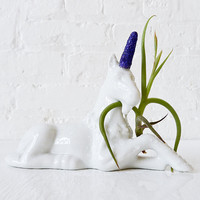 30% SALE Magic Unicorn Air Plant Garden