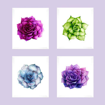 Set of 4 Succulents on White, Watercolor, Prints CUSTOM COLORS Modern Art Prints for Nursery or Home Decor Custom Colors Modern prints  8x10