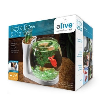 AQUATICS - KITS: STARTER/BOXED - BETTA BOWL AND PLANTER - WHITE - ELIVE, LLC - UPC: 81997010029 - DEPT: AQUATIC PRODUCTS