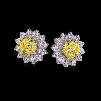 Certified yellow diamonds 11 ct. jacket earrings studs
