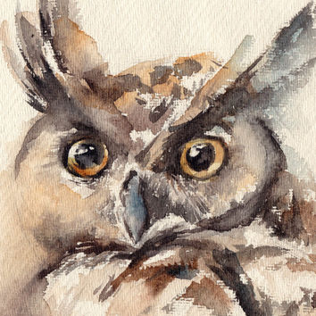 Owl Painting, Original Watercolor Painting, Bird Painting Art, Watercolour Art