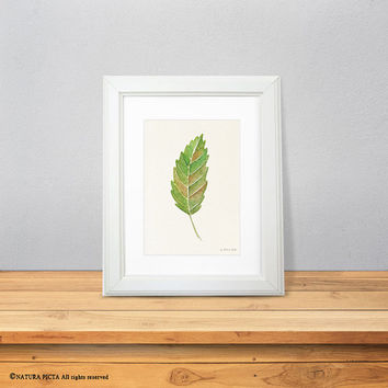 Leaf print-chestnut leaf print-watercolor maple leaf print-fall print-autumn-nature art-botanical print-home decor-by NATURA PICTA-NPWP09