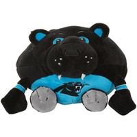 Carolina Panthers Orbiez Plush Football Toy