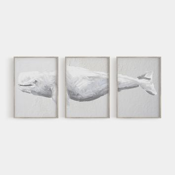 Beluga Whale Triptych Art Print or Canvas