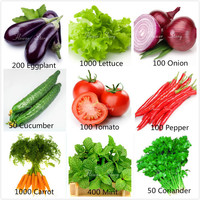 Free Shipping 3000 Seeds 9 Kinds Essential DIY Garden Ground & Pot Vegetable Seeds Tomato Pepper Onion Cucumber Lettuce etc