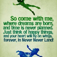 Peter Pan Never Land
