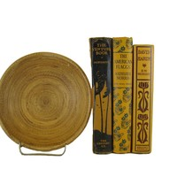 Decorative Book Accent Bundle in Dark Yellow