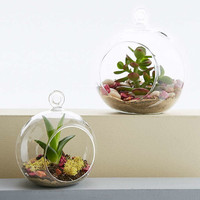 Small Glass Terrarium - Urban Outfitters