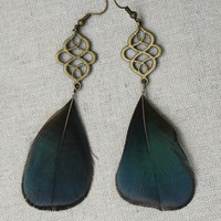 Beautiful Filigree Celtic Bronze Blue Amherst Pheasant Feather Earrings
