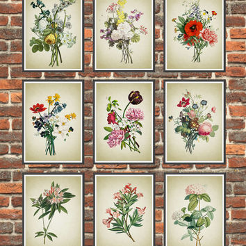 Set of 9 Prints Antique Botanical Flowers Art Prints, Get 3 Colors Background, Botanical Home Decor, Antique Flowers Book Illustration *2*
