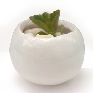 White Pinch Pot - Small Handmade White Ceramic Planter - White Plant Pot for Succulent or Cacti