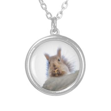 Squirrel with a walnut round pendant necklace