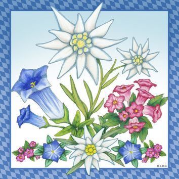 Ceramic Wall Plaque: Edelweiss