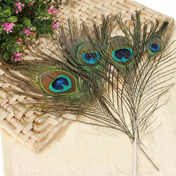 Peacock Feather Decoration