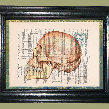 Human Skull Classifications - Vintage Dictionary Page Art Print Upcycled Book Page Art Skull Print