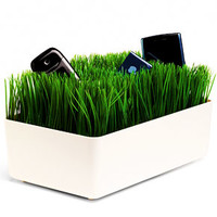 Turf Charging Station