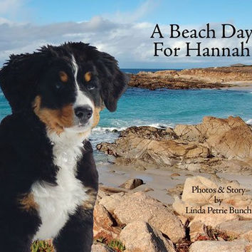 A Beach Day for Hannah (Mountain Dog Books)