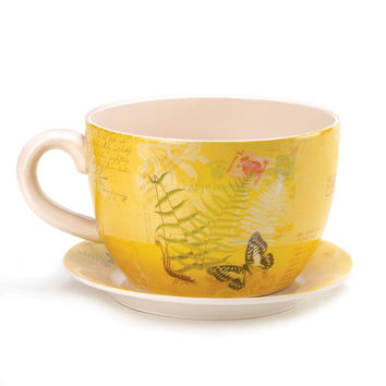 Flower Planter-Large Butterfly Teacup and Plate