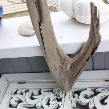 Natural Driftwood Wishbone Sculpture , Beach Decor and Art Supply , Driftwood Piece