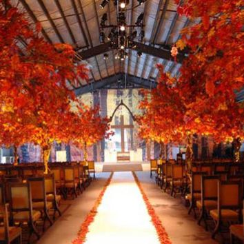 Trending Now: Beautiful Fall Wedding Photos