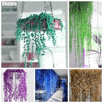 Rounded Bead Seeds Pearl Chlorophytum Seeds Hanging Bonsai Flower Plants Home Garden Supplies 100Pcs A Bag Radiation Protection
