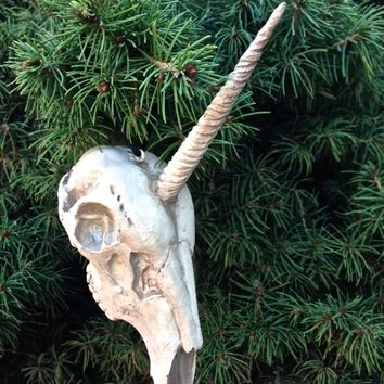 It'a awesome ornament for your Christmas tree, this gorgeous after dead skeleton unicorn ornament is made from resin and features a strikingly spooky image of a unicorn skeleton big horn.