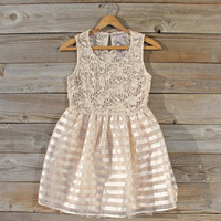 Lace Kiss Party Dress