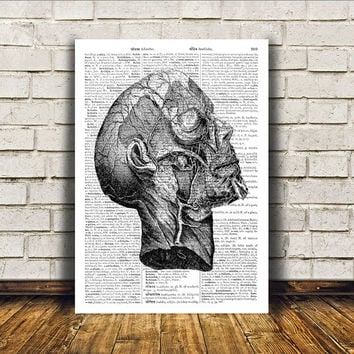 Anatomy print Head poster Gothic decor Macabre art RTA151