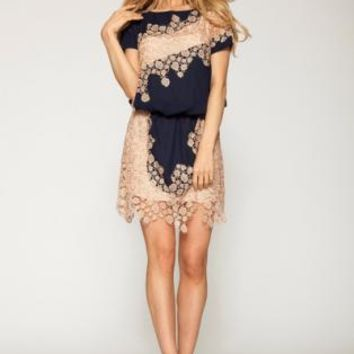 Navy Blue and Nude Lace Dress